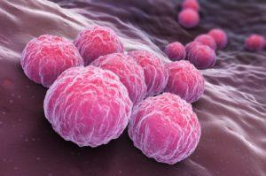 <span class='p-name'>Bệnh Chlamydia là gì? Cách chữa bệnh Chlamydia  tận gốc, an toàn, hiệu quả hiện nay.</span>