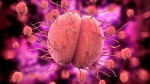 <span class='p-name'>Triệu chứng bệnh lậu ở nam giới và tác hại của bệnh lậu ở nam giới.</span>